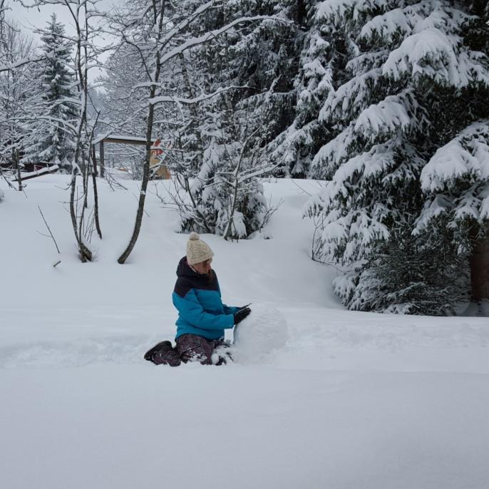 FE im Schnee, Februar 2016